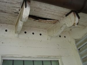 Leaking roof and rotted decking
