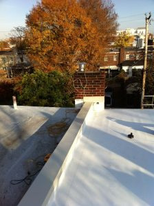 Flat roof row house wall coping