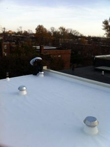 Alexandria va row house roof