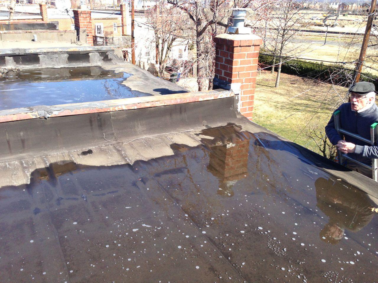 Flat Roof Ponding Water In Alexandria, Va