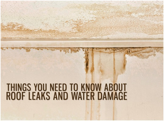 Roof Leaks and Damage